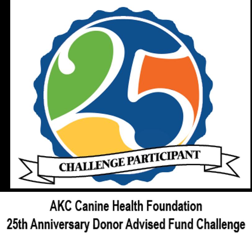 25th Anniv DAF Challenge                                     Badge.png
