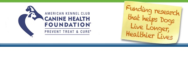 Longer, Healthier Lives Banner