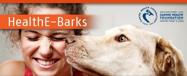 HealthE-Barks Newsletter Banner