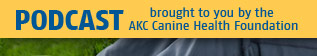 brought to you by the AKC Canine Health Foundation