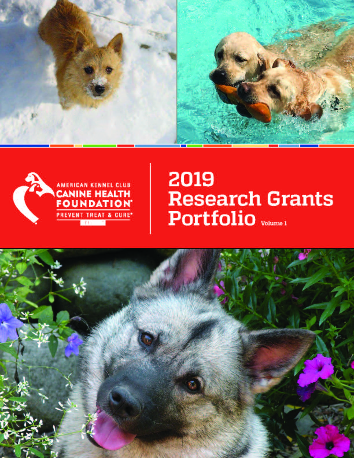 AKC CHF 2019 Research Grants Portfolio Vol 1 Cover