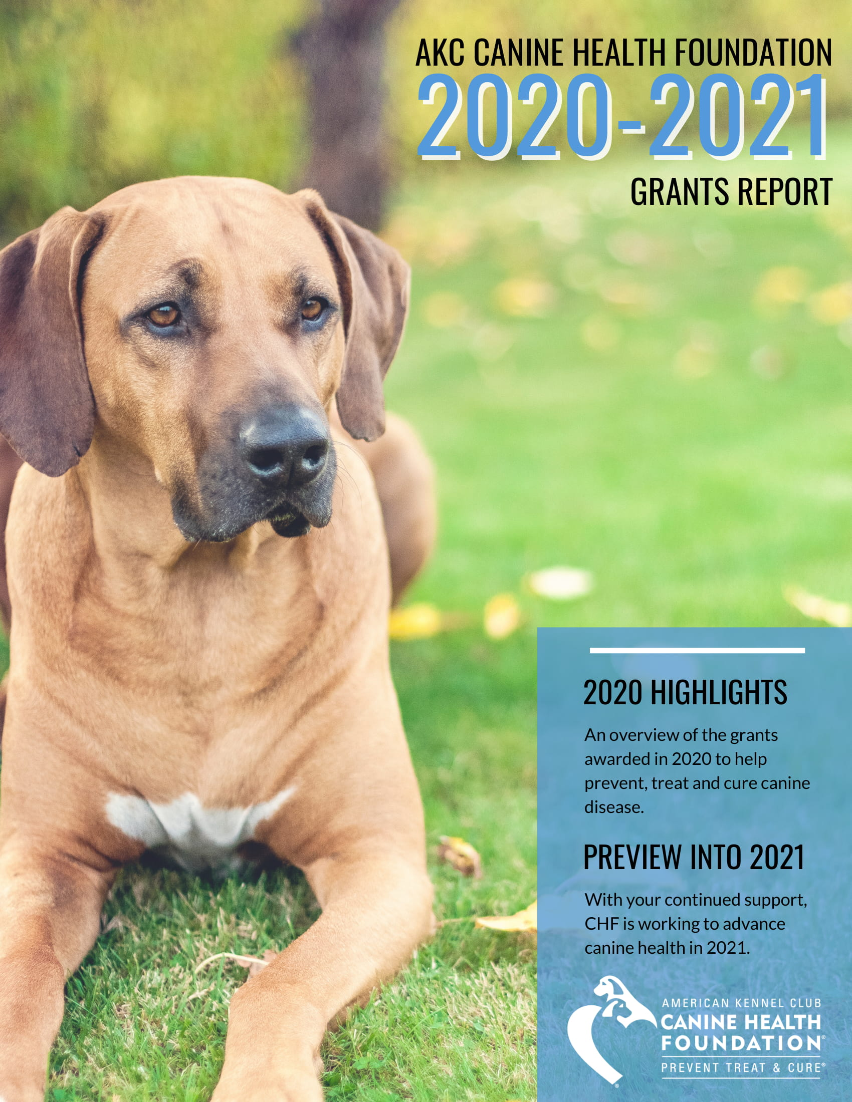 2020-2021 Grants Report cover