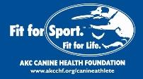 Blue Fit for Sport Bandana Logo