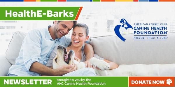 HealthE-Barks E-Newsletter